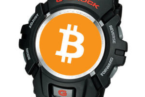 Store Bitcoin seed phrase recovery key on G-Shock G-2900 wristwatch